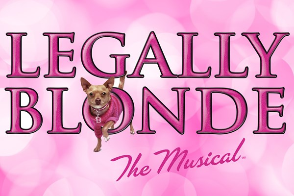 Legally Blonde Junior